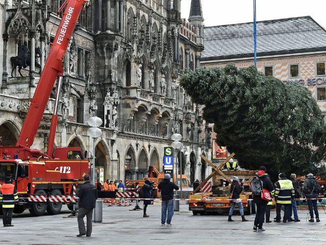 Die Münchner Berufsfeuerwehr stellt den Christbaum 2016 auf.