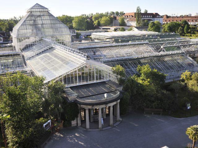 Das Gewächshaus im Botanischen Garten, Foto: Franz Höck, Botanischer Garten München-Nymphenburg