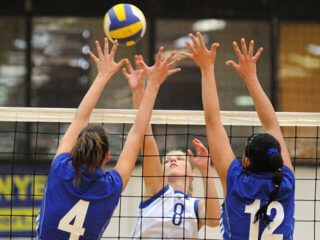 Frauen beim Volleyball, Foto: Shutterstock