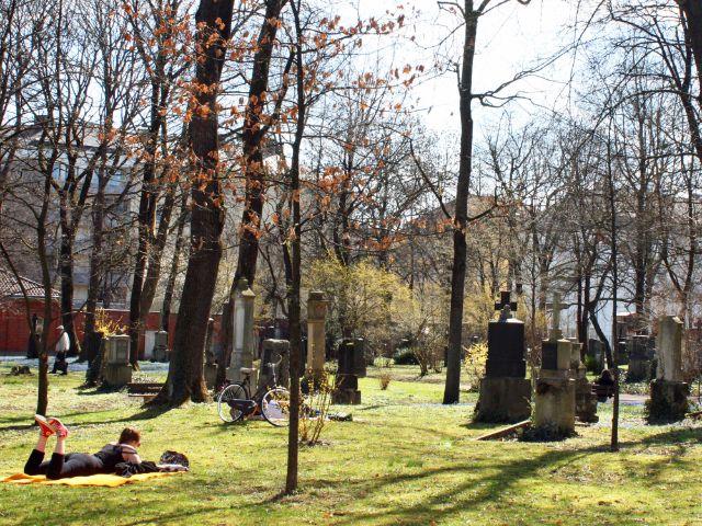 Besondere Orte zum Sonnen in München: Nordfriedhof, Foto: Leonie Liebich