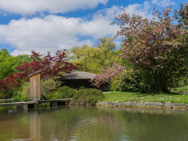 Das japanische Teehaus im Englischen Garten, Foto: Lukas Fleischmann