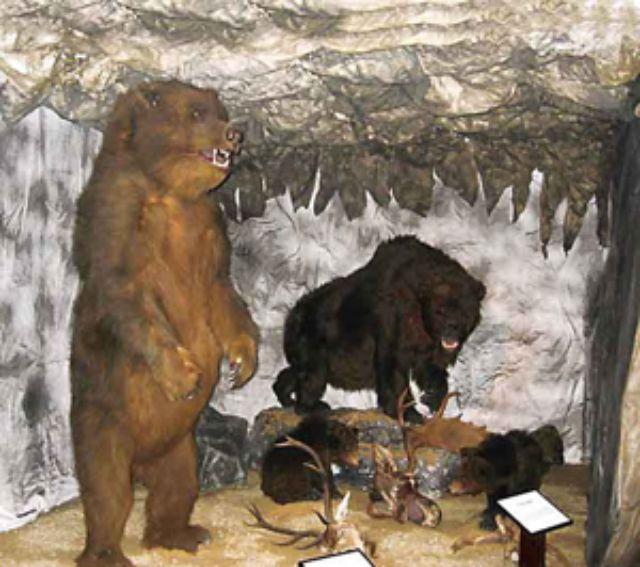 Frasdorfer Höhlenmuseum, Foto: Tourist - Info Frasdorf