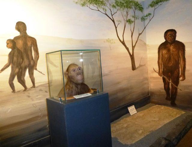 Modelle von Neandertalern in der Ausstellung des Urzeitmuseums Taufkirchen an der Vils., Foto: Urzeitmuseum