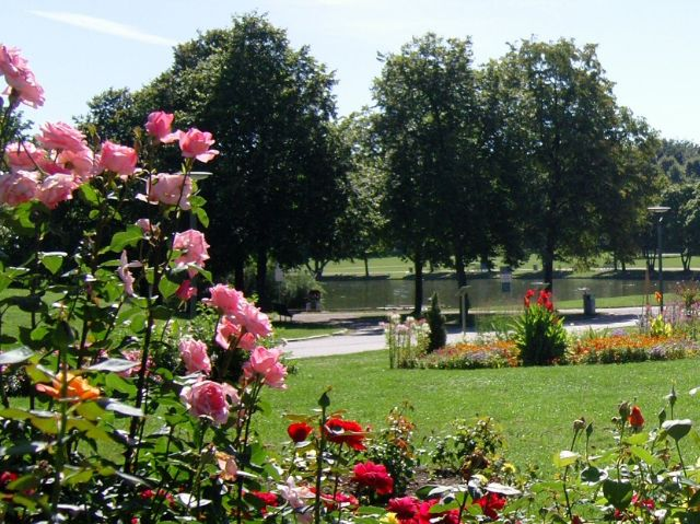 Sommer im Westpark