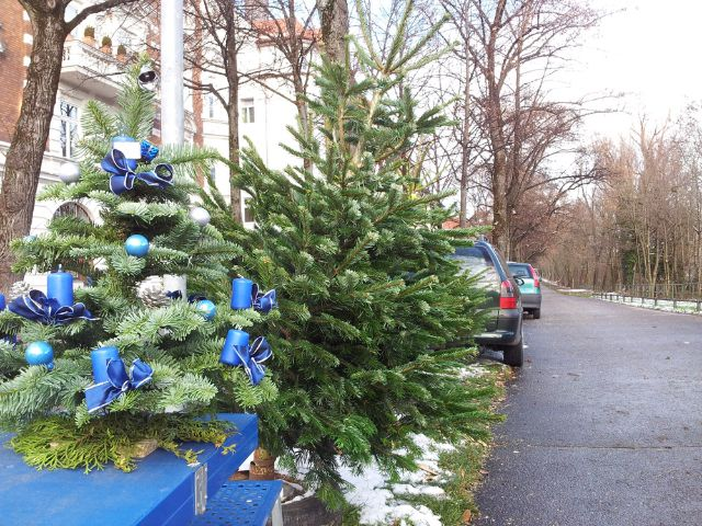 christbaumverkauf und weihnachtsb ume in m nchen das. Black Bedroom Furniture Sets. Home Design Ideas