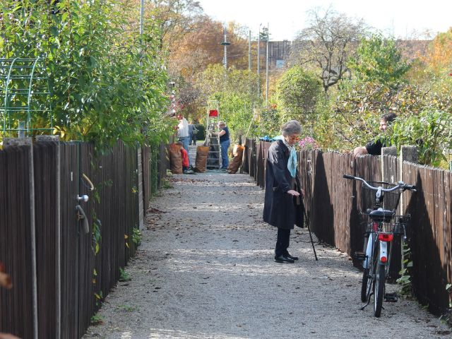 Kleingartenanlage in Laim