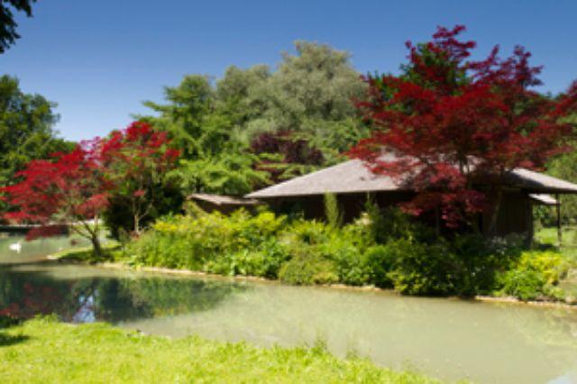 Japanisches Teehaus im Englischen Garten, Foto: Katy Spichal