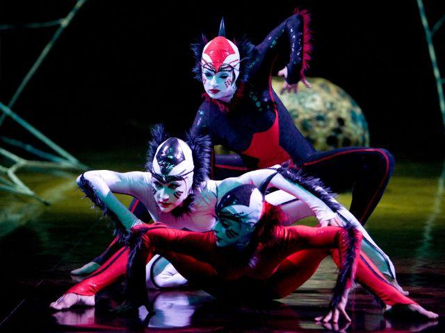 Cirque du Soleil: Ovo, Foto: Promoters Group Munich