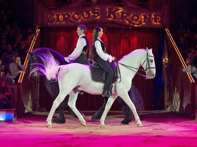 Pferdedressur im Circus Krone, Foto: Circus Krone