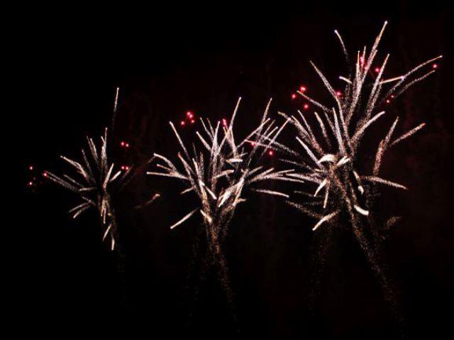 Feuerwerk Sommernachtstraum 2010, Foto: Benedikt Angermeier