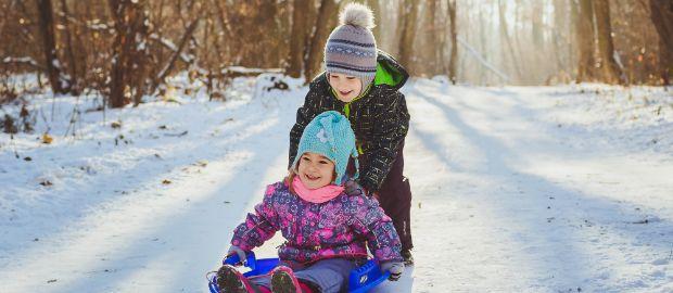 Kinder rodeln im Wald, Foto: Elina-Lava / Shutterstock.com