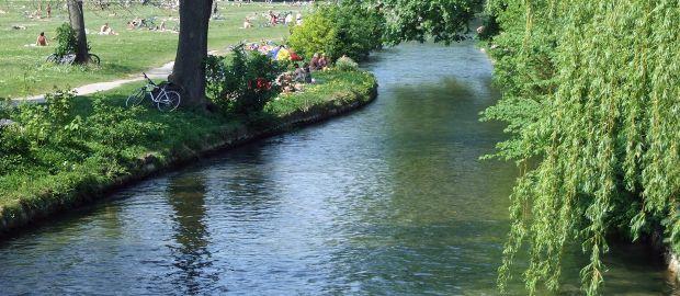 Englischer Garten: Schwabinger Bach Wird Renaturiert - Das
