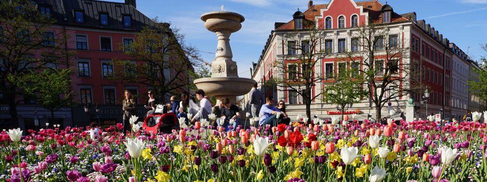 Gärtnerplatz im Frühling., Foto: muenchen.de/Vauelle