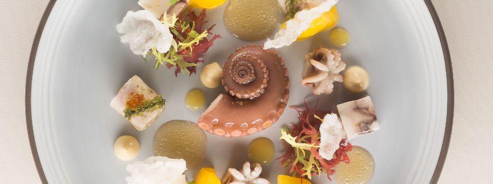Oktopus, Sepia, Jakobsfrucht, Tapioka, Foto: Dallmayr