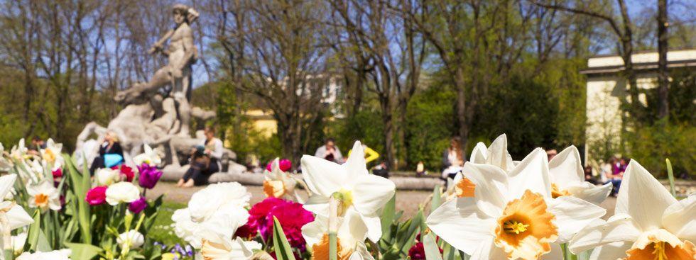 Frühling in der Innenstadt am Alten Botanischen Garten