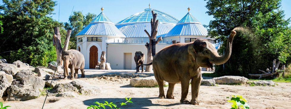 Das fertig gestellte Elefantenhaus im Tierpark Hellabrunn, Foto: Tierpark Hellabrunn / Marc Müller