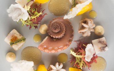 Oktopus, Sepia, Jakobsfrucht, Tapioka