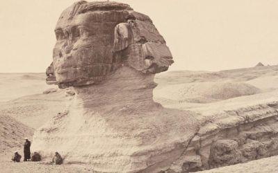 Fotos aus der Ausstellung zu Adolphe Braun