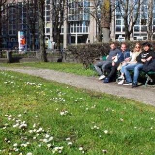 10 Münchner Sonnenplätze: Grünfläche an der Ottostraße