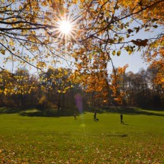 Best of Bavariapark