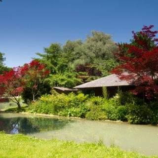 So schön ist der Englische Garten