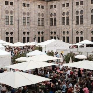 Pfälzer Weinfest