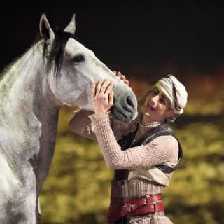 Harmonie zwischen Mensch und Pferd