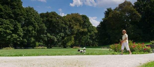 Luitpoldpark in München Schwabing