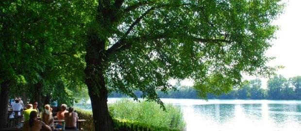Bilder vom Langwieder See