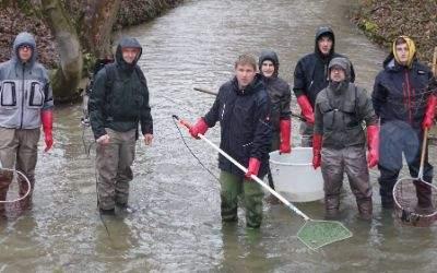 Isarfischer retten Fische in den Stadtbächen