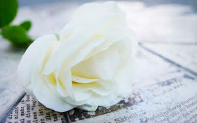 Gedenken an die Weiße Rose vor der LMU