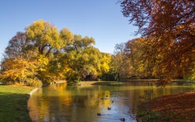 Englischer Garten im Herbst