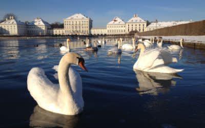Winterliche Stimmung beim Schloss Nymphenburg