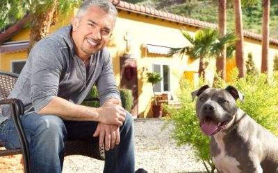 Cesar Millan, der Hundeflüsterer