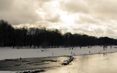 Isarauen im Winter