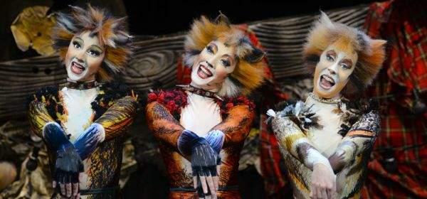 Cats Musical am Deutschen Theater